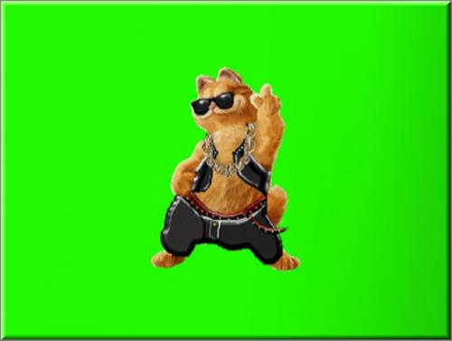 футаж бесплатно-Гламурный кот танцует (на хромакее)