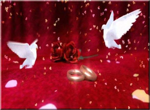 свадебный футаж Кольца голуби падающие сердечки
