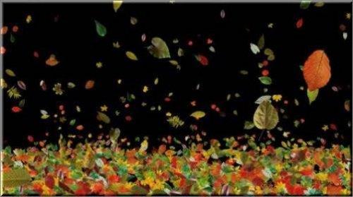 Футаж - листопад