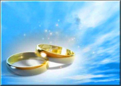 футаж Обручальные кольца