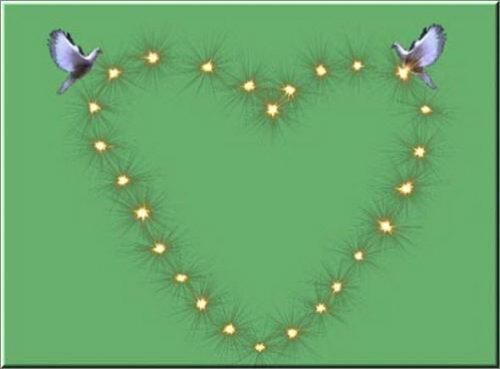 футаж Голуби и сердце на хромакее