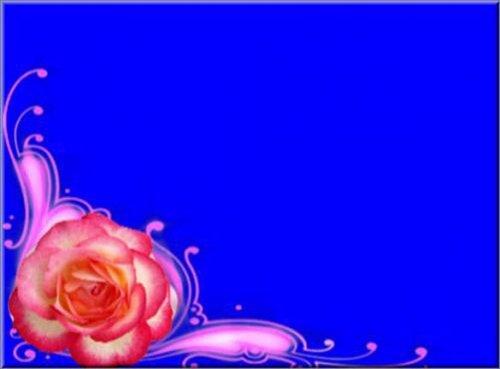 футаж Бордюр роза на хромакее