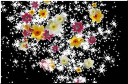 футаж Падающие цветы с блеском