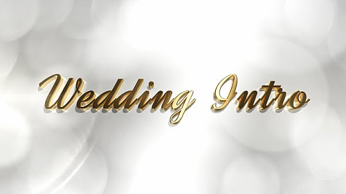 Wedding Intro - Project for After Effects (Videohive)