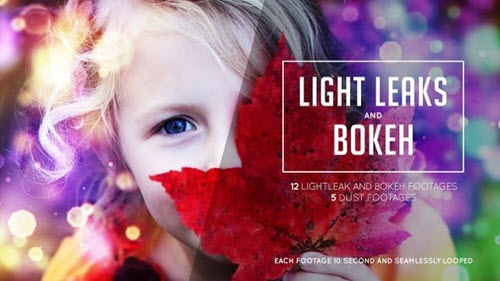 Bokeh and Lightleak - 24679277 - Motion Graphics (Videohive)