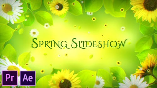 Spring Slideshow - Premiere Pro - 26205325 - Project for After Effects