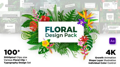 Floral Design Pack - Project for After Effects (Videohive)