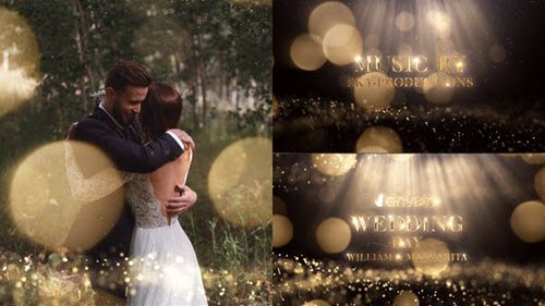 Wedding - 22263676 (Videohive)