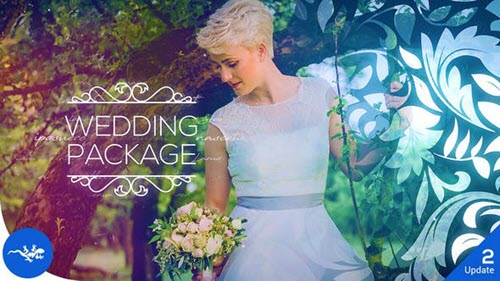 Wedding Package V2 - 22669041 - Project for After Effects